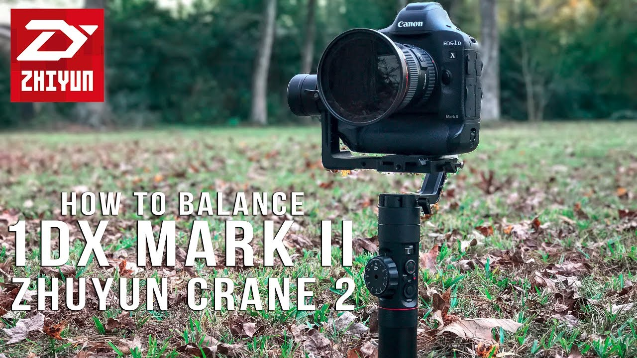 NIKON D5 vs CANON 1DX Mark II vs SONY a9 Which To Buy | The .