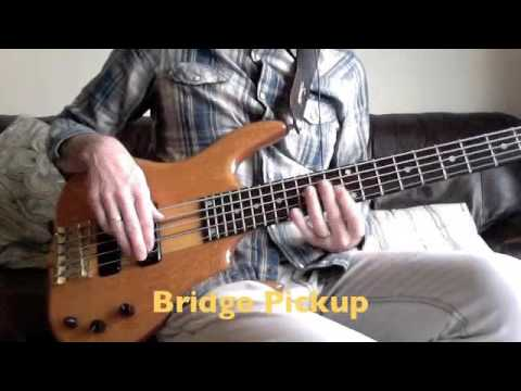 Apologise, Ken smith bass guitar licks think, that