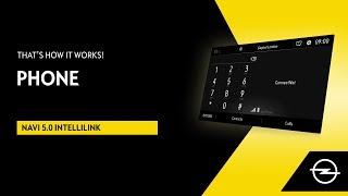 Navi 5.0 IntelliLink | Phone | That's How It Works!