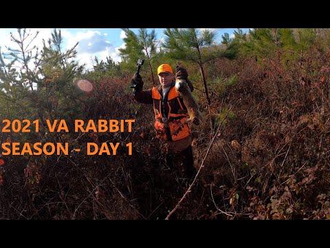 2021 VA RABBIT SEASON-DAY 1-HARD RUNNING RABBIT BEAGLES-MULTIPLE SHOTS FIRED-ACTION PACKED HUNT!