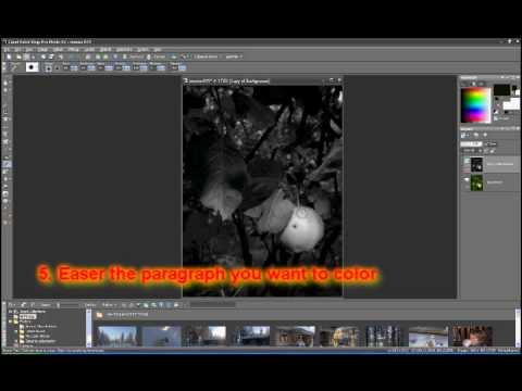 Corel paint shop pro x2 color in black and white picture tutorial