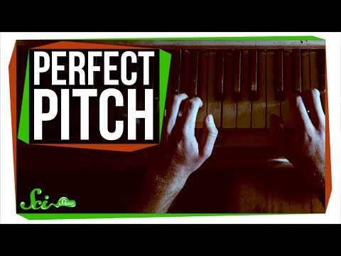 Can You Learn Perfect Pitch?