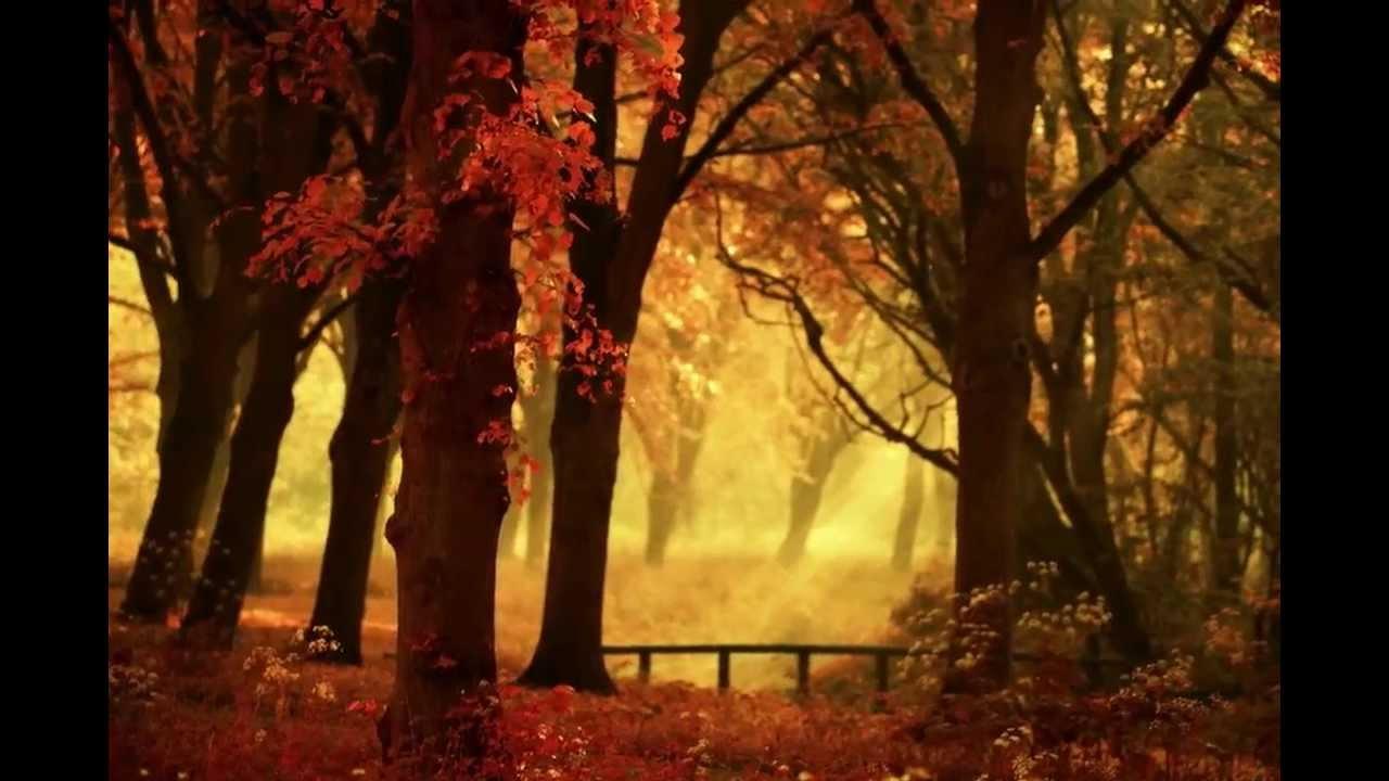autumn by lars van de goor youtube. Black Bedroom Furniture Sets. Home Design Ideas