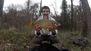 Video Pêche de petites carpes sauvages en stalking en hiver download MP3, 3GP, MP4, WEBM, AVI, FLV November 2017