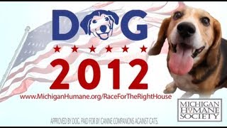 Vote for Dog! Race for the Right House 2012