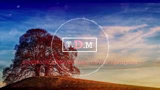 The Temper Trap - Sweet Disposition (Codeko & LZRD Remix)