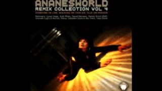 VR120 Ananesworld Remix Collection Vol  4 Walking On Thin Ice Louie Vega, Sebastien Grand & Alex Finkin Remix