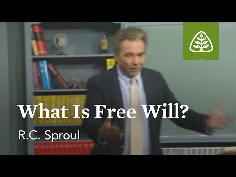 What Is Free Will?