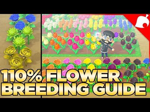 The Full Flower Breeding Guide For Animal Crossing New Horizons