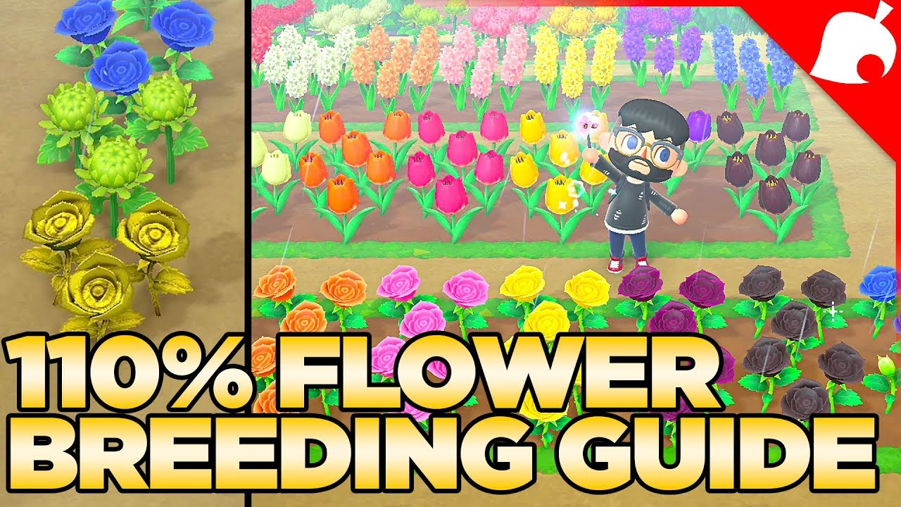 The Full Flower Breeding Guide For Animal Crossing New Horizons