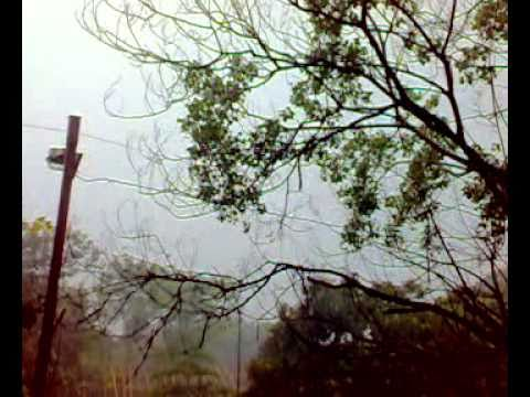 Jamshedpur Rainy Weather...mp4