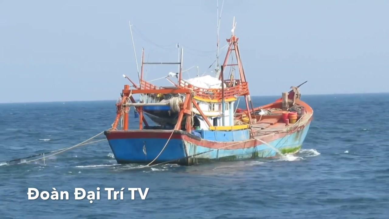 Ngư dân kiếm tiền tỷ nhờ mạo hiểm ra nhà giàn DK1 khai thác hải sản