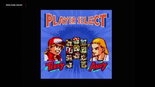 Fatal Fury: First Contact - SNK Neo Geo Pocket Color - VGDB
