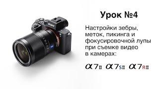 видео В Шурышкарском районе энергомошенники получат чёрные метки