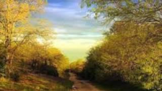 15 Minute Walking Meditation