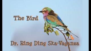 Dr. Ring Ding Ska-Vaganza - The Bird