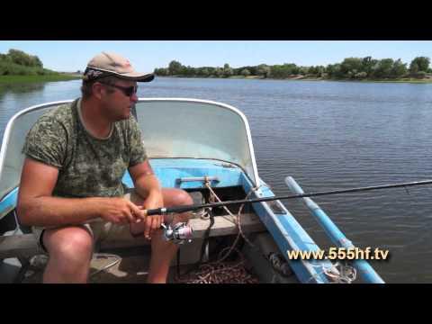 рыбалка на сома в ериках