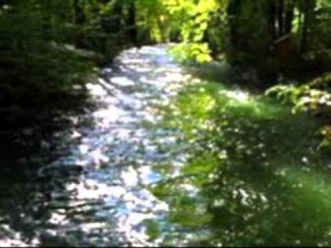 95 A River, A Lifegiving River