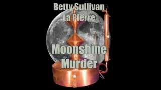 Moonshine Murder #14 'hawkman Series'