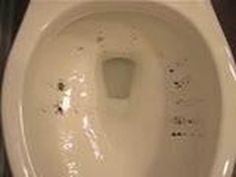 Kohler Cimarron Flush Youtube