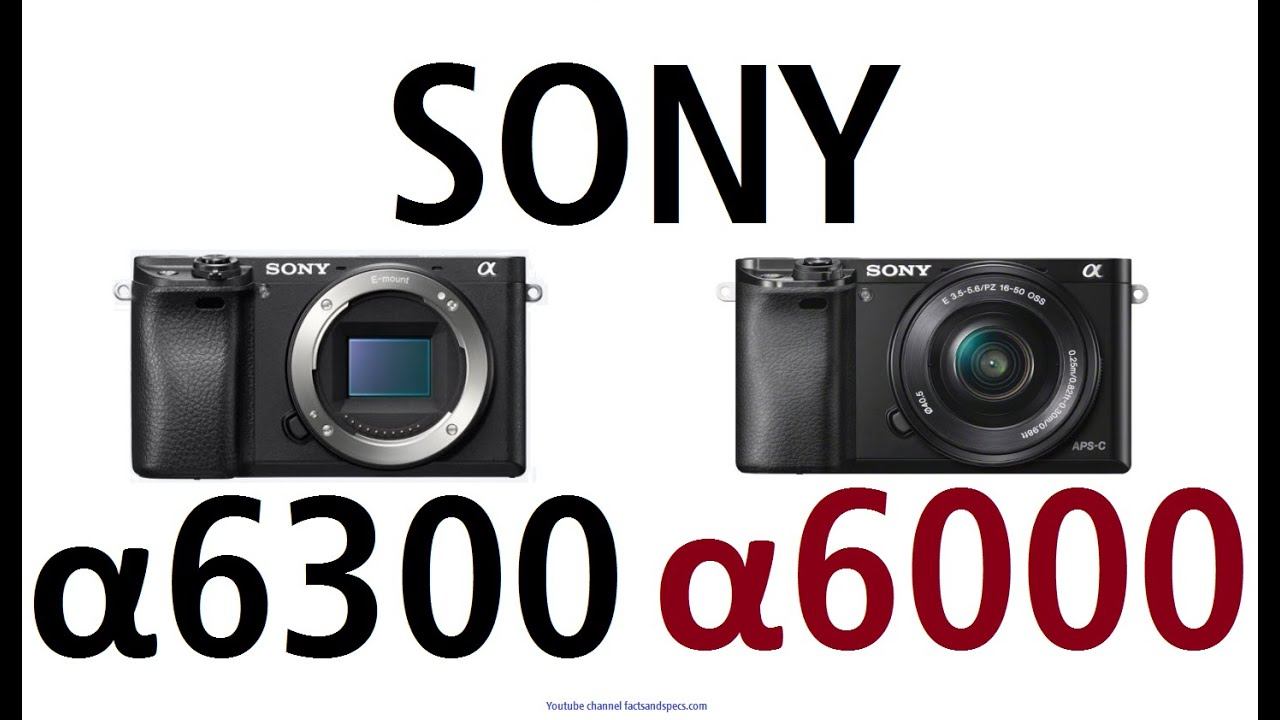Цифровой фотоаппарат со сменной оптикой sony alpha ilce-6000 kit 16 50mm black купить в интернет-магазине mediamarkt с доставкой по москве: