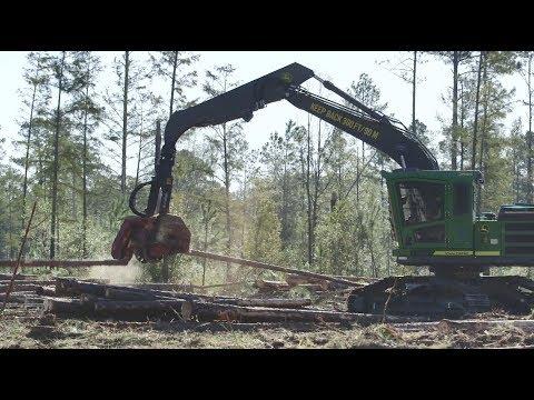 Swing Machine With Waratah Harvesting Head   Smith Logging