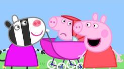 Peppa Wutz | Das Baby Schweinchen | Peppa Pig Deutsch Neue Folgen | Cartoons für Kinder