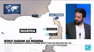 Mort du chef de Boko Haram Abubakar Shekau : quelles conséquences dans la région ?