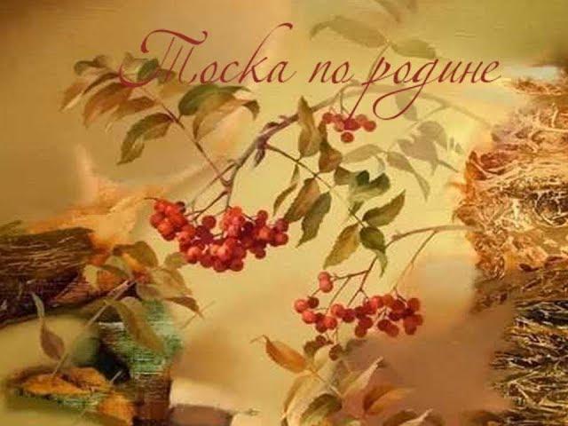 Изображение предпросмотра прочтения – «МБОУ СОШ№5 г.Амурска» читает произведение «Тоска по родине» М.И.Цветаевой