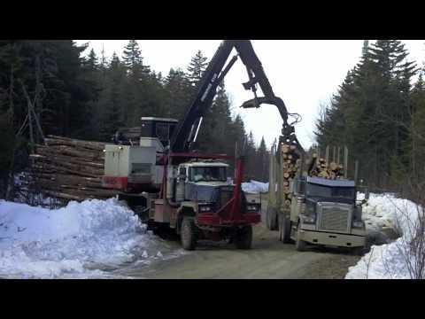 Used Trucks Maine >> Golden Road - Useless Road - YouTube