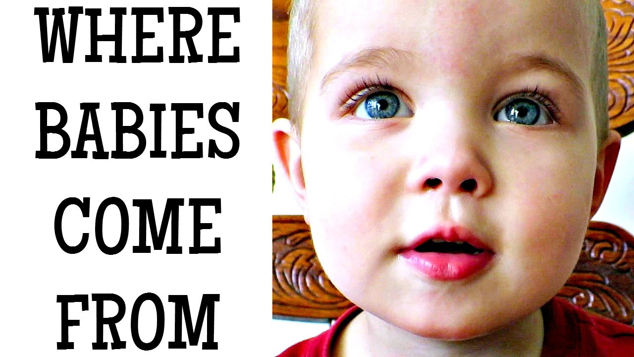 WHERE DO BABIES COME FROM? - YouTube