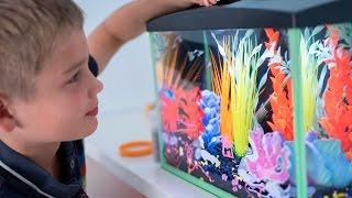 Kids Glow Aquariums