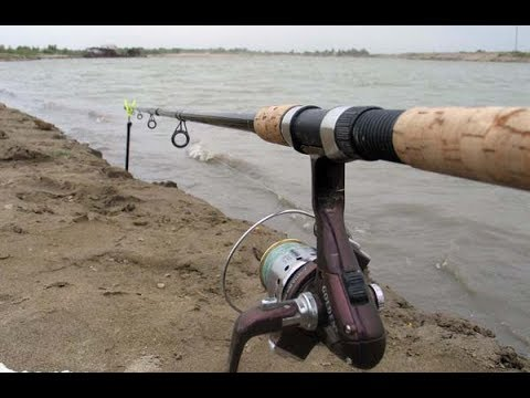 Рыбалка с фидером. Истринское водохранилище.