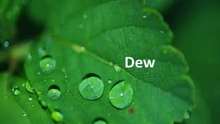 ऊष्मा – Evaporation Process and Dew – Hindi