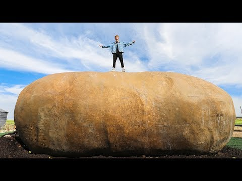 Overnight INSIDE the World's Largest Potato