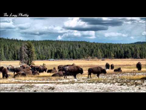 Big Beautiful Wyoming