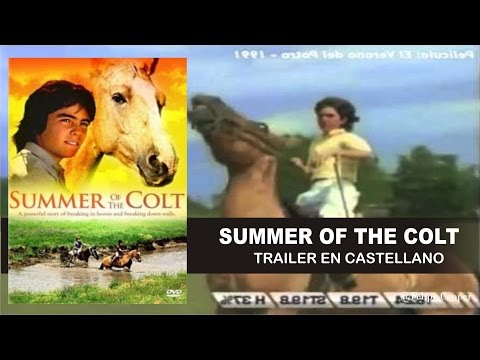 Summer Of The Colt 1991