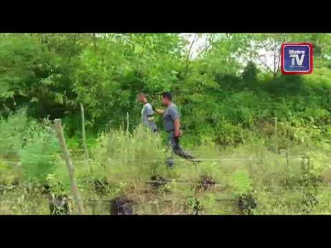 Warga Kemboja sembunyi dalam kebun