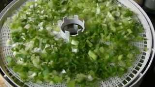 How to Dehydrate Green Onions or Scallions