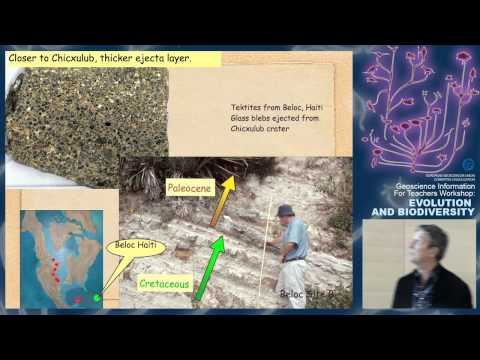 GIFT2011: The delicate balance between Chicxulub impact and/or Deccan traps