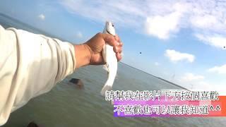 釣魚趣  鹿港 北堤 玩 豆豆 魚 前打 竿 拉起來 真不錯
