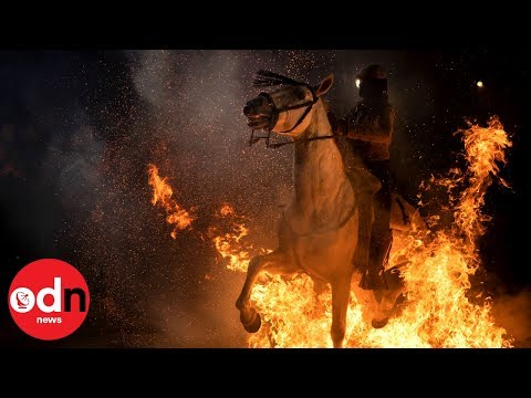 Horses run through bonfires at Luminarias festival thumbnail