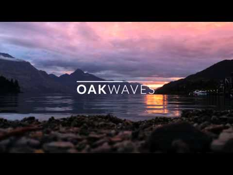 Richard Jenkins - Fading Soldier   Oak Waves