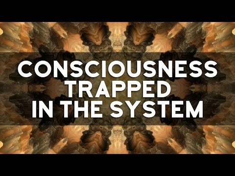 Consciousness Trapped In The System