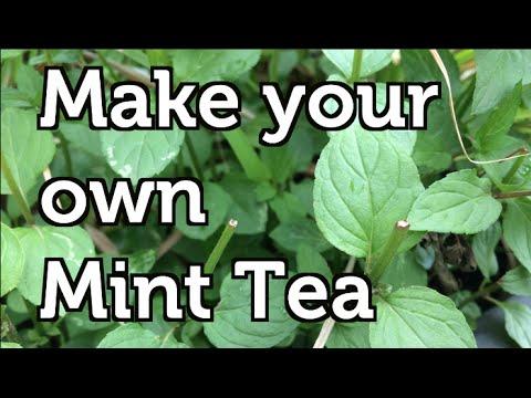 Описание, состав, вкус, аромат, цвет, послевкусие, полезные свойства и действие, способ приготовления чая малина с мятой. Купить травяной чай.