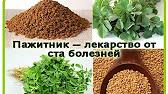 Хельба (пажитник сенной, шамбала) ♥ заказать с доставкой можете через интернет-магазин beeko. Ru. Бесплатная доставка при заказе от 2990.