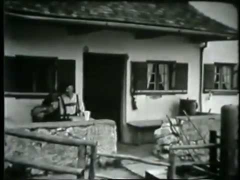 Grassauer Almen - Wie es früher mal war...
