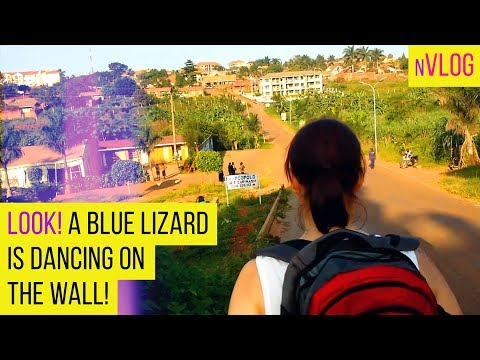 Lizards Dance & Boys Fight on the way to the mall in Kampala