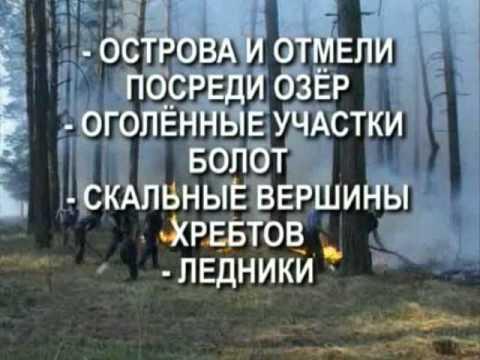 Действия при лесном пожаре
