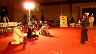 Exposición Limitada Dachshund Kcu Julio 2009